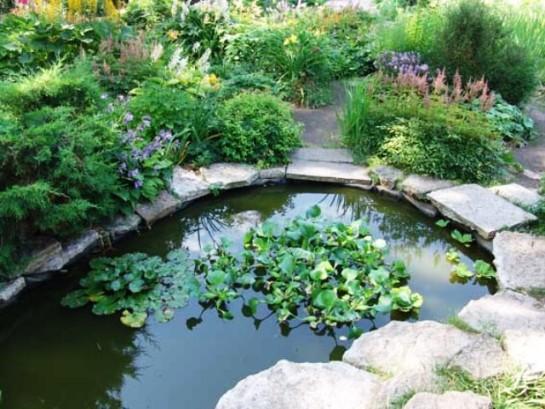пруд в английском саду