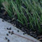 Засыпной тип искусственного газона