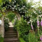 Облагораживание участка при помощи арки из вьющихся растений
