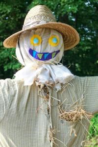 голова для чучела огородного своими руками