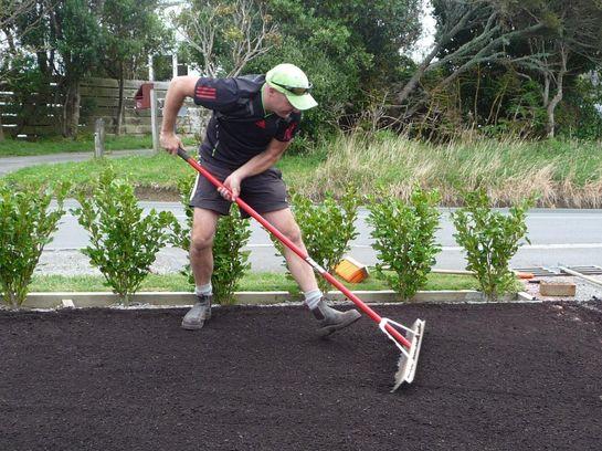 как посеять газонную траву своими руками