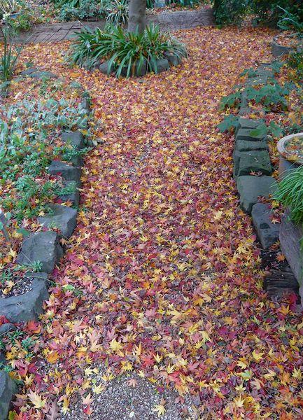 Покрытие из щебня засыпано опавшей листвой
